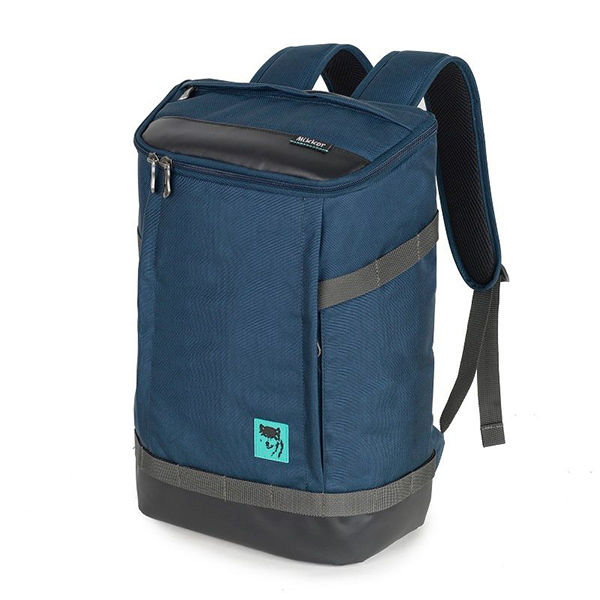 Balo laptop Mikkor The Irvin Backpack mã BM538 17